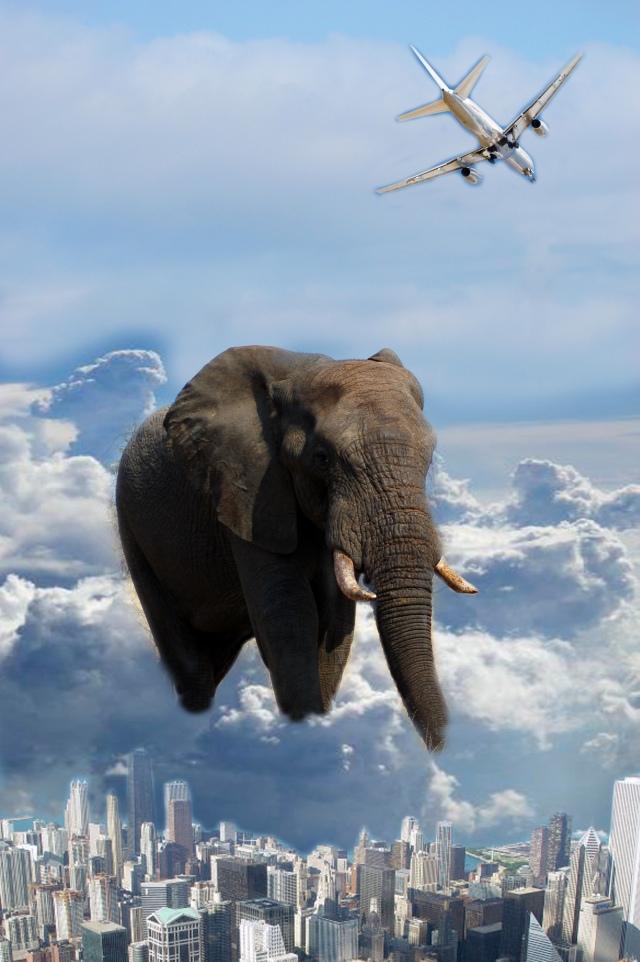 Projektive Traumarbeit ist Gruppen Arbeit: Die Blinden und der Elefant.